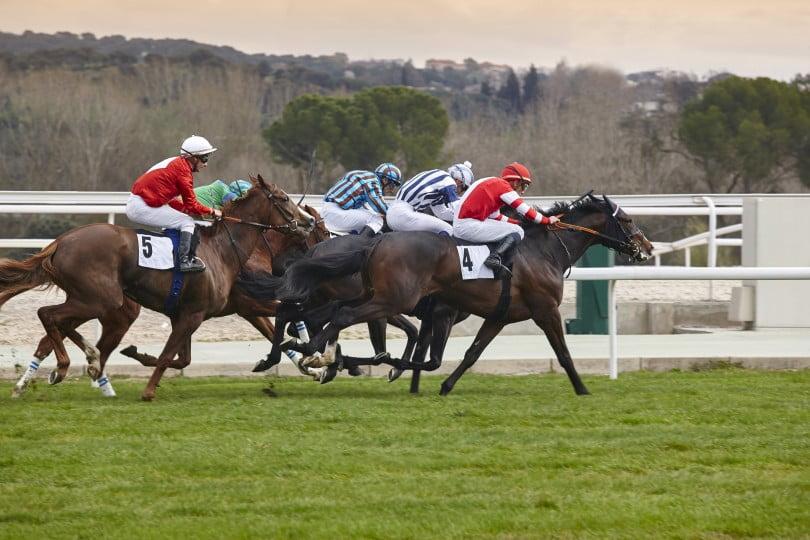 gokken op paarden